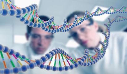 十五项 男性高发肿瘤基因检测