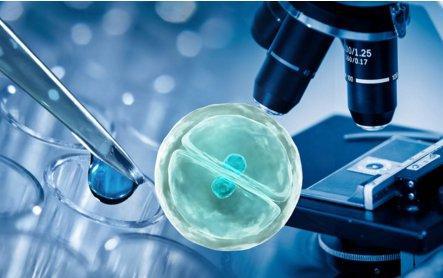 干细胞知识深度科普一览!